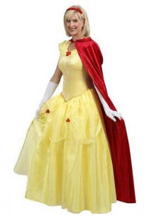 Stunning Long Fairy Tale Belle Princess Costume Dress